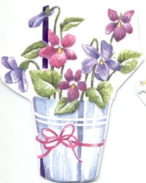 bucket of violets